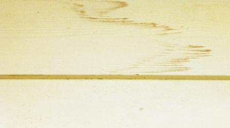 Tannin Stain, Painting Company, House Painters, Atlanta, Alpharetta, Sandy Springs, Dunwoody, Brookhaven, Buckhead, Roswell, Marietta, Milton, Decatur